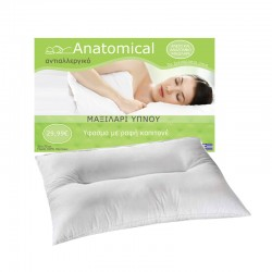 ANATOMIC PILLOW FOAM PC-POL